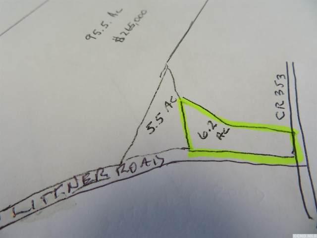0 Littner Road, Rensselaerville, NY 12147 (MLS #139704) :: Gabel Real Estate