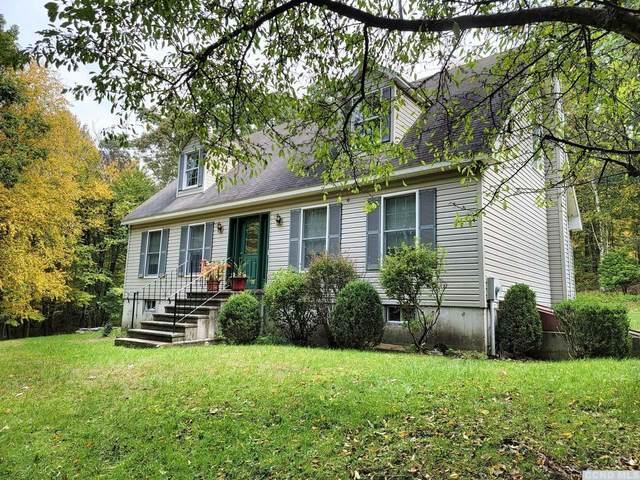 172 Julianna Drive, Copake, NY 12516 (MLS #139709) :: Gabel Real Estate