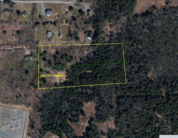0 Trail View Ln, Windham, NY 12496 (MLS #139711) :: Gabel Real Estate