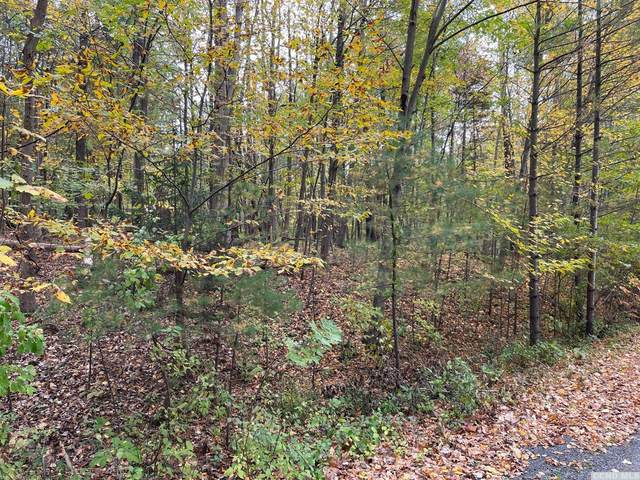 54 Tommy Trail, Coxsackie, NY 12051 (MLS #139723) :: Gabel Real Estate