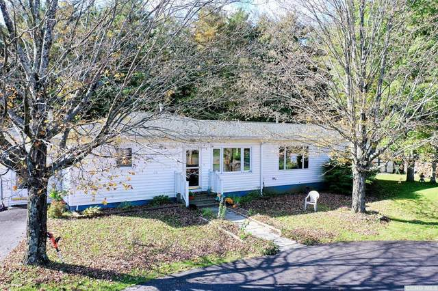 307 W Silver Spur Road, Cairo, NY 12470 (MLS #139728) :: Gabel Real Estate