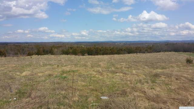 6840 Us Route 9, Stockport, NY 12534 (MLS #139736) :: Gabel Real Estate