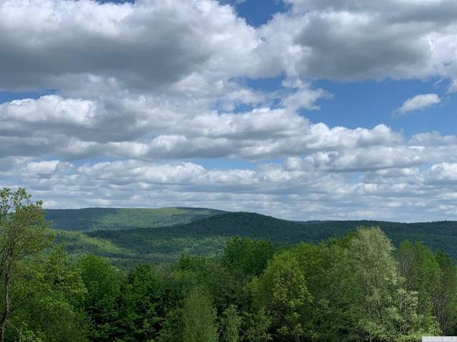 0 Old Ghost Rd Lot #21, New Lebanon, NY 12125 (MLS #139739) :: Gabel Real Estate