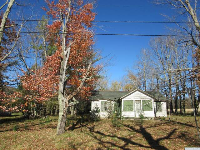 5534 Route 23C, Jewett, NY 12444 (MLS #139761) :: Gabel Real Estate