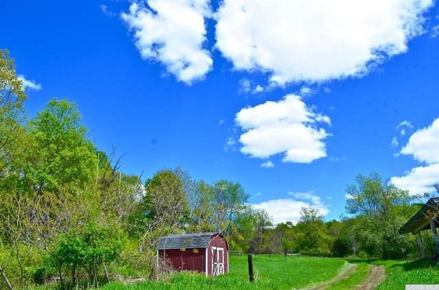 175 Overlook Road, Copake, NY 12516 (MLS #107349) :: Gabel Real Estate