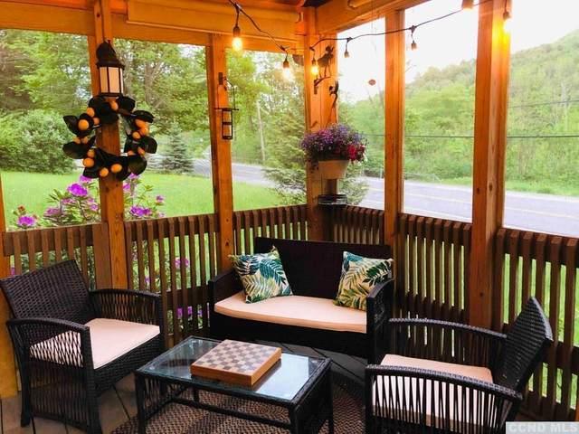 14054 Route 23, Prattsville, NY 12468 (MLS #130450) :: Gabel Real Estate