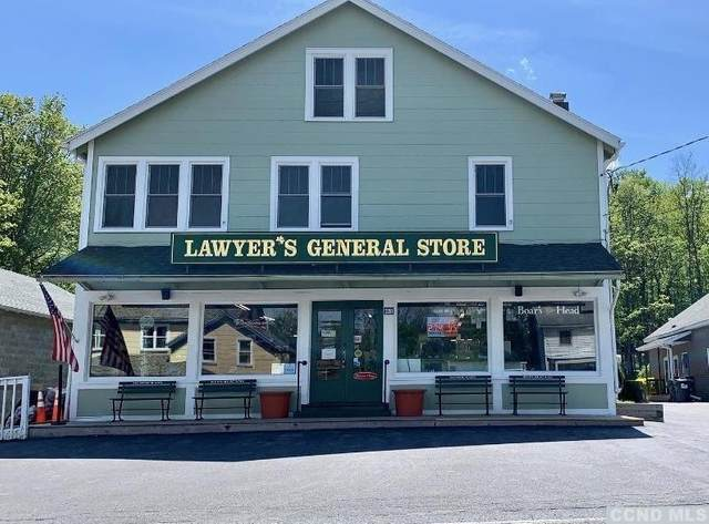 2351 Rte 145, East Durham, NY 12423 (MLS #131231) :: Gabel Real Estate