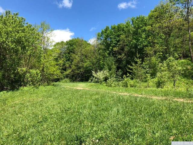 0 Warners Lake Road, Berne, NY 12059 (MLS #131667) :: Gabel Real Estate