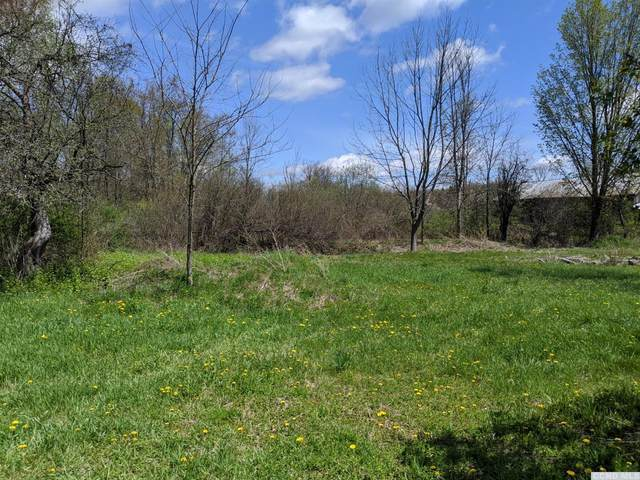 614 County Route 405, Westerlo, NY 12083 (MLS #131669) :: Gabel Real Estate