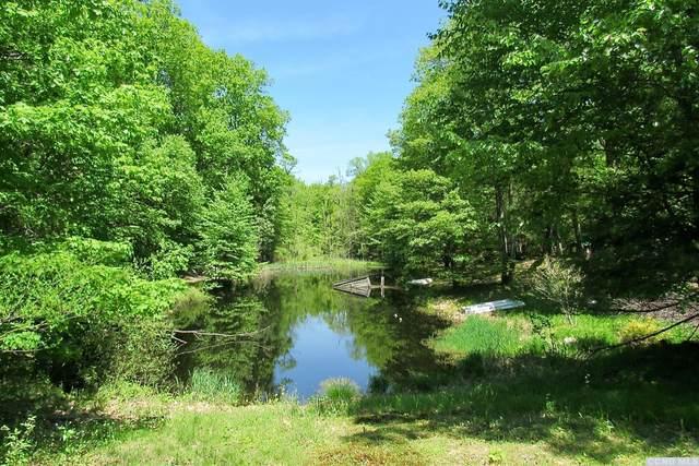 271 Camp, Gallatin, NY 12571 (MLS #131786) :: Gabel Real Estate