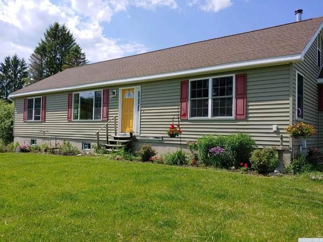 450 Long Rd, Berne, NY 12059 (MLS #131862) :: Gabel Real Estate