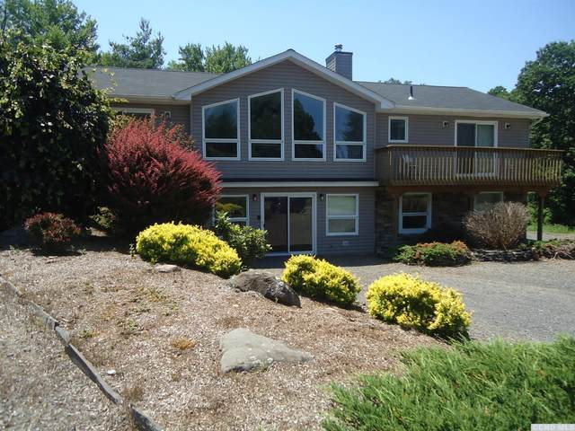 97 Cr 20B, East Durham, NY 12423 (MLS #132692) :: Gabel Real Estate