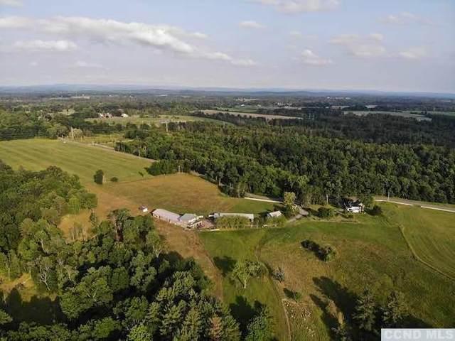 271 Hollow Road, Stuyvesant, NY 12173 (MLS #132788) :: Gabel Real Estate