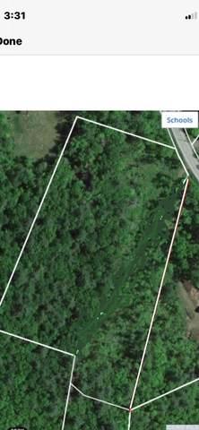 0 Route 296, Hunter, NY 12442 (MLS #133330) :: Gabel Real Estate