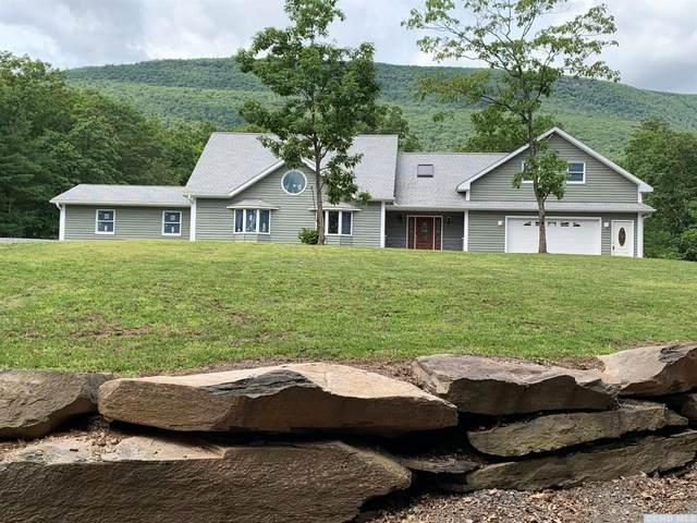 841 Bogart Road, Catskill, NY 12463 (MLS #133963) :: Gabel Real Estate