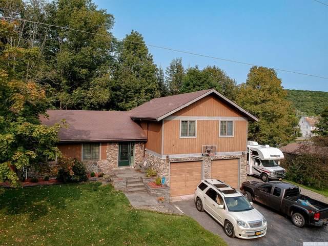 45 School View Rd, Roxbury, NY 12474 (MLS #134302) :: Gabel Real Estate