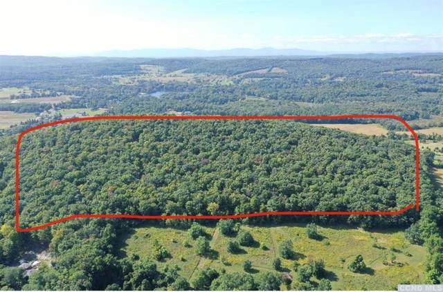 7890 Route 22, Copake, NY 12517 (MLS #134410) :: Gabel Real Estate
