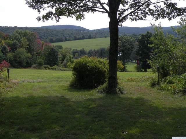 0 Crow Hill Road, Austerlitz, NY 12017 (MLS #134547) :: Gabel Real Estate
