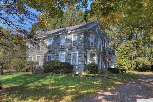559 Hunt Road, Hillsdale, NY 12529 (MLS #134575) :: Gabel Real Estate