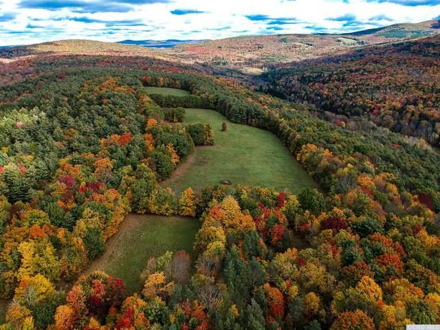 69 Alpine View, Prattsville, NY 12468 (MLS #134750) :: Gabel Real Estate