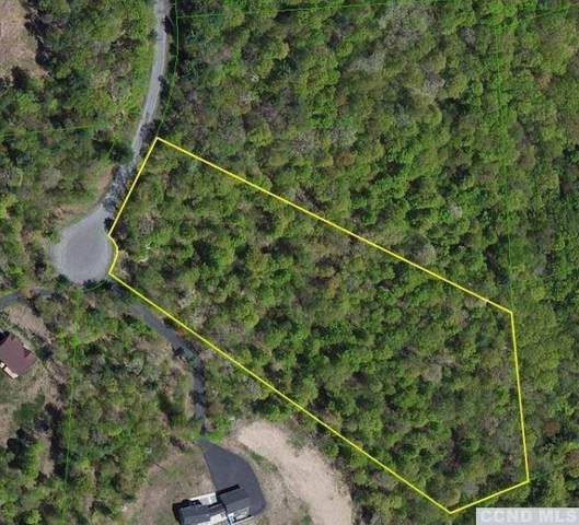 0 Thomas Road Lot 8, Cairo, NY 12413 (MLS #134952) :: Gabel Real Estate