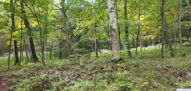 0 West Settlement Road, Ashland, NY 12407 (MLS #135020) :: Gabel Real Estate