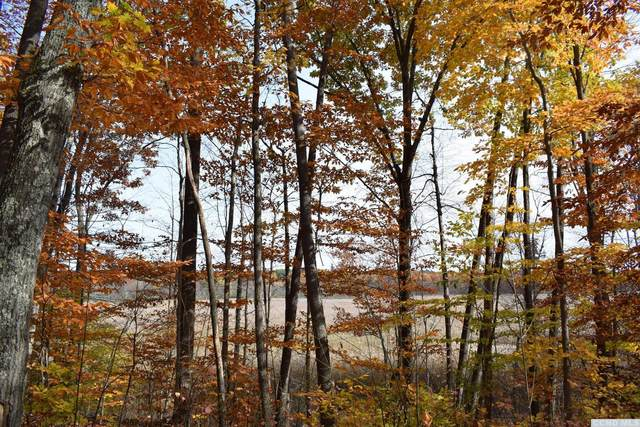 0 Vly (Valley) Per Gogglemaps Road, Greenville, NY 12431 (MLS #135044) :: Gabel Real Estate