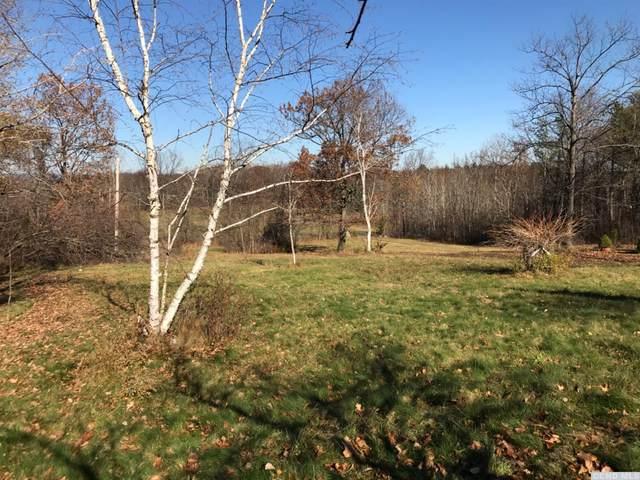 189 Sutton Road, Durham, NY 12423 (MLS #135323) :: Gabel Real Estate