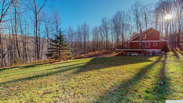 581 Route 17, Jewett, NY 12444 (MLS #135330) :: Gabel Real Estate
