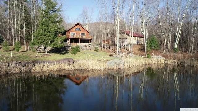 58 Alpine Way, Jewett, NY 12444 (MLS #135408) :: Gabel Real Estate