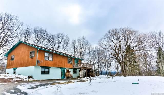 667 Route 13, Lexington, NY 12452 (MLS #135436) :: Gabel Real Estate