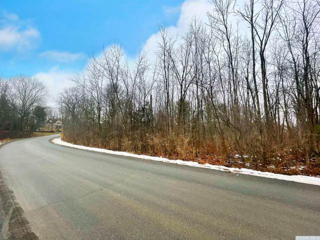 0 Tommy Trail, Athens, NY 12015 (MLS #135953) :: Gabel Real Estate