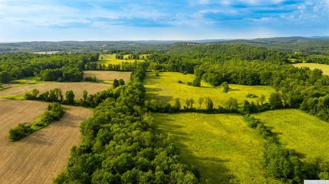 0 County Route 17, Chatham, NY 12184 (MLS #135954) :: Gabel Real Estate