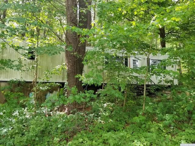0 Klein Road, Taghkanic, NY 12523 (MLS #136184) :: Gabel Real Estate