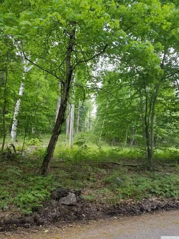 0 Klein Road, Taghkanic, NY 12523 (MLS #136185) :: Gabel Real Estate