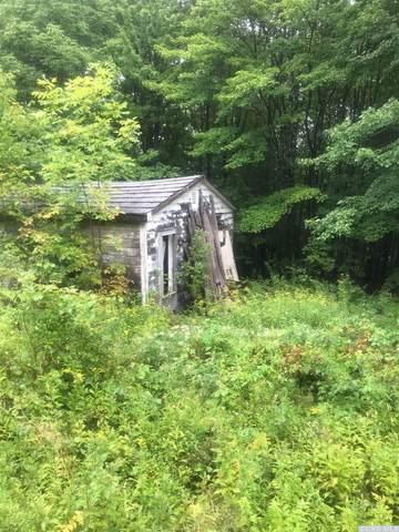 0 462 Robinson Road, Conesville, NY 12076 (MLS #136529) :: Gabel Real Estate