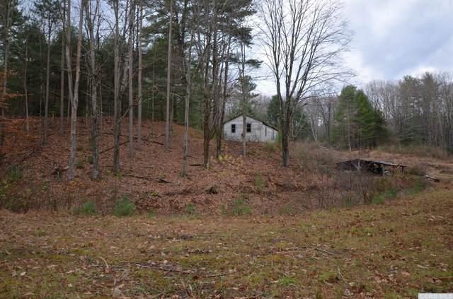 336 Upper Cherrytown Road, Kerhonkson, NY 12446 (MLS #136550) :: Gabel Real Estate