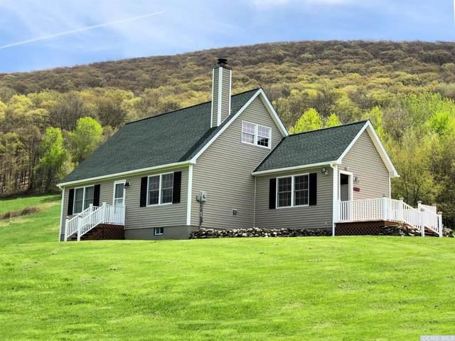 74 Breezy Hill Road, Copake Falls, NY 12517 (MLS #136627) :: Gabel Real Estate