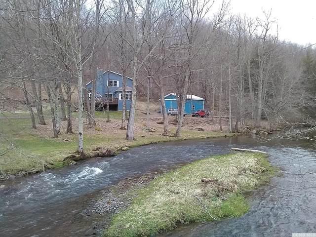104 Old Herrick, Margaretville, NY 12455 (MLS #137213) :: Gabel Real Estate