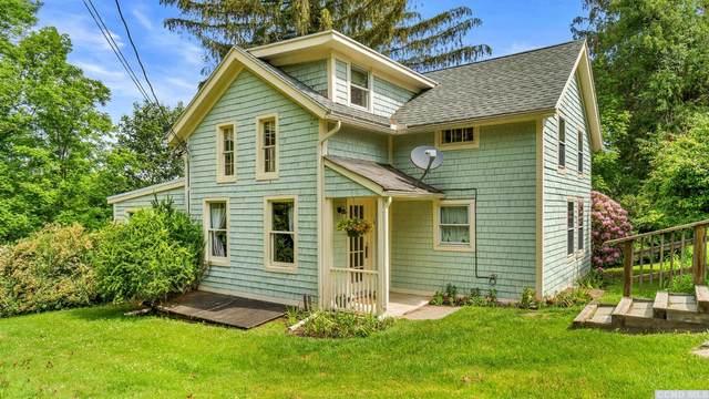 14 Mansfield Road, Hillsdale, NY 12529 (MLS #137235) :: Gabel Real Estate