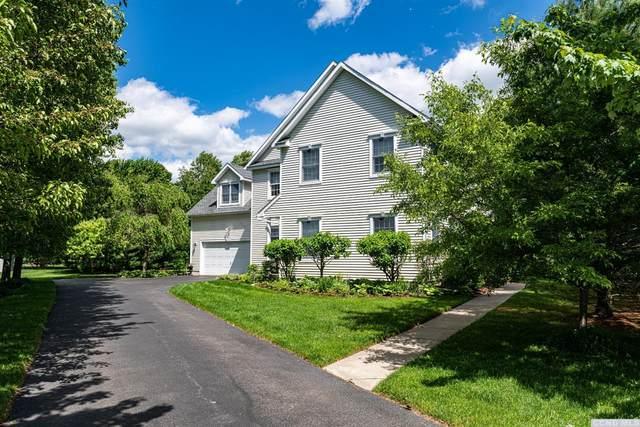 18 Duck Lane, Kinderhook, NY 12106 (MLS #137778) :: Gabel Real Estate