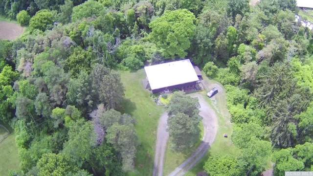 181 Wagon Wheel Road, Kinderhook, NY 12106 (MLS #137962) :: Gabel Real Estate
