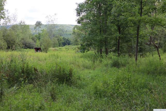 0 County Route 5(Off Of), Canaan, NY 12029 (MLS #138561) :: Gabel Real Estate
