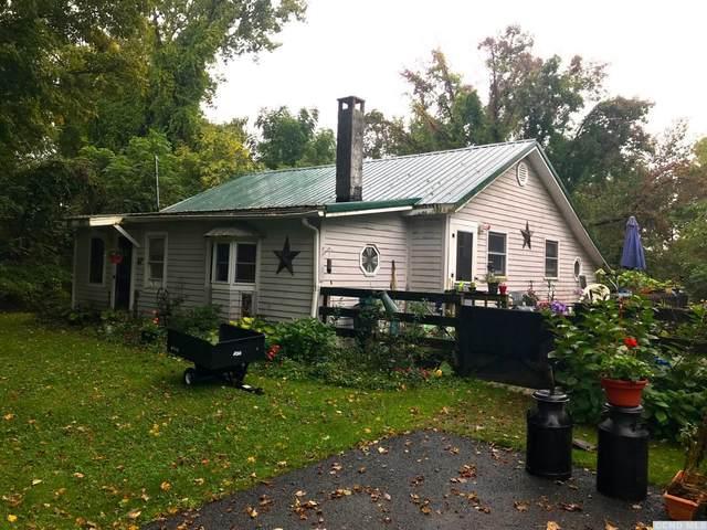 67 North Mountain Rd, Copake, NY 12517 (MLS #138604) :: Gabel Real Estate