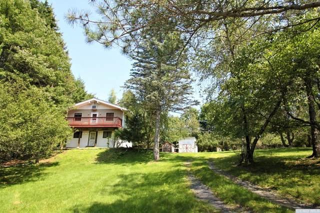 47 Cherokee Drive, Copake, NY 12516 (MLS #138743) :: Gabel Real Estate