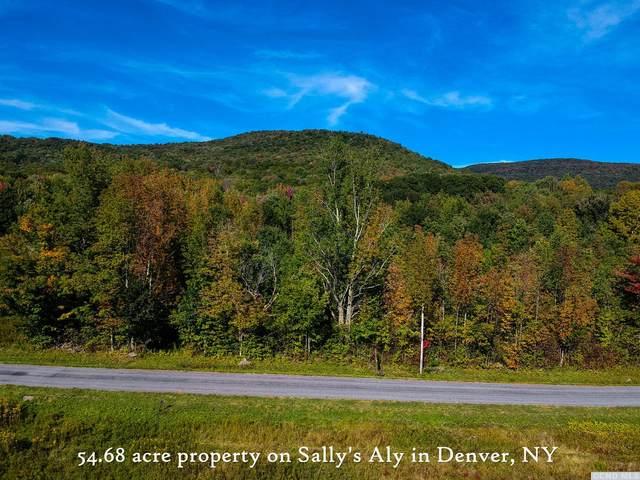 0 Sallys Alley, Roxbury, NY 12421 (MLS #139358) :: Gabel Real Estate