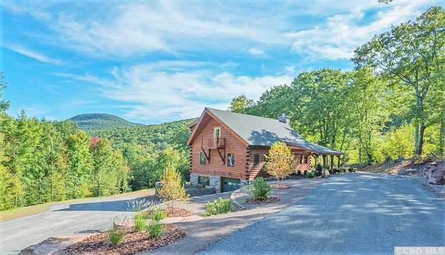 155 La Rosa Lane, Durham, NY 12422 (MLS #139408) :: Gabel Real Estate