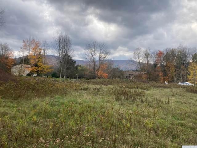 20 Brook Hollow Lane, Windham, NY 12496 (MLS #139500) :: Gabel Real Estate