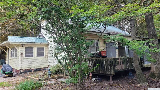 10 Rose Lane, Catskill, NY 12463 (MLS #139610) :: Gabel Real Estate