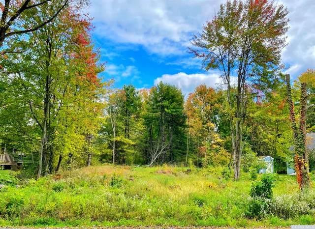 162 Sleepy Hollow Road, Athens, NY 12015 (MLS #139633) :: Gabel Real Estate